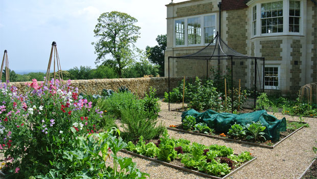 Affordable Garden Design affordable english garden house designs with english perennial garden design and english rose garden design Affordable Garden Design In Haslemere For A Traditional New Home With New Home Garden Design